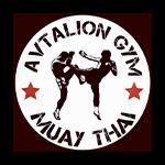 avtalion logo png 150x150